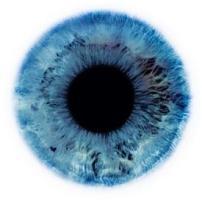 De olho