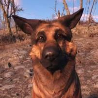Dogmeat1402