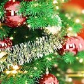 Natale 2014 5 idee naturali per addobbare l 39 albero - Idee x decorare l albero di natale ...