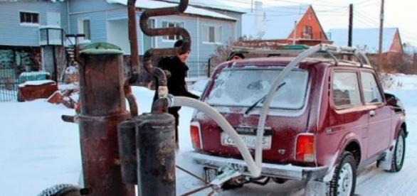 Le bois, futur carburant automobile?