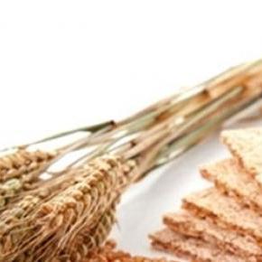 El consumo de fibra previene el cáncer de colon