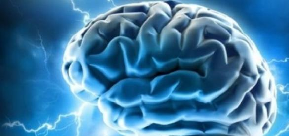The power of our human brain