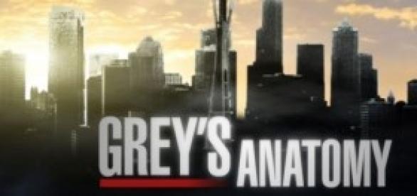 Greys anatomy take it back