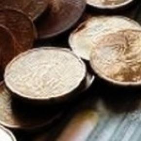 Dichiarazione dei redditi 730 2014 novit su detrazioni - Quando scade la presentazione del 730 ...