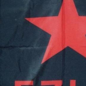 Bandera representativa del EZLN