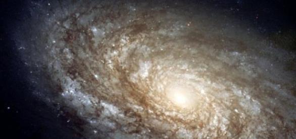 Un principio antrópico regiría el cosmos