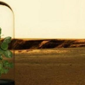 ESA buscará crear alimentos para astronautas