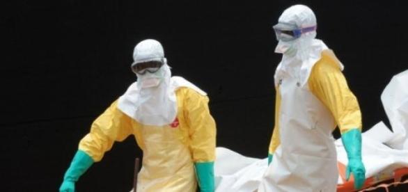 Ébola, la enfermedad en expectativa.