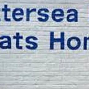 Battersea Dogs and Cats Home take in many animals