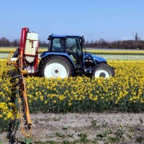 Traktor beim Ausbringen von Pflanzendünger