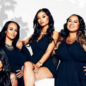 The complete cast of The Westbrooks reality show