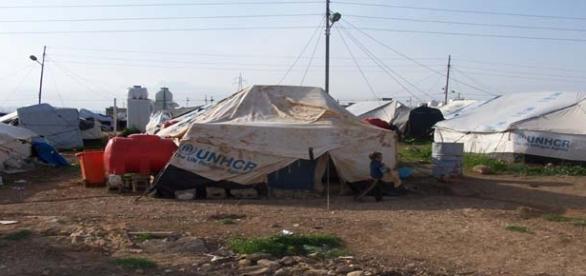 EU wants Turkey's help with migrant crisis.