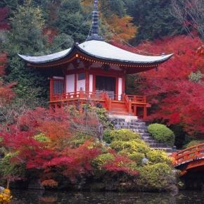 Giardini giapponesi milano idee per la casa for Giardini giapponesi roma