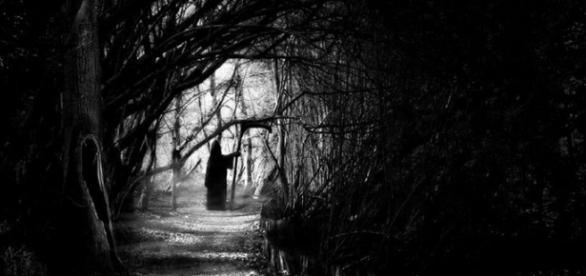 Droga donikąd przez las nienawiści (pinterest.com)