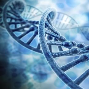 Misterele ADN-ului uman au fost descoperite