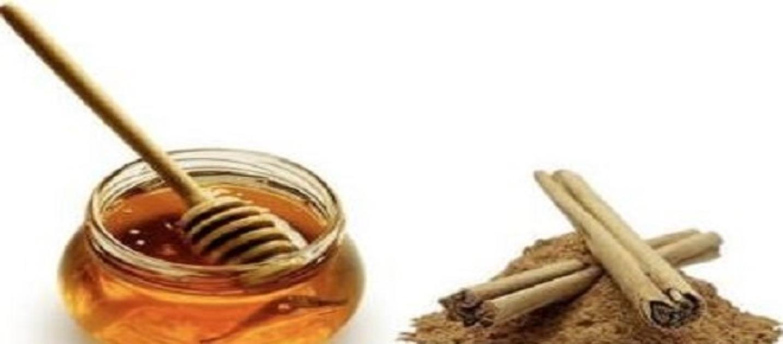 Como bajar de peso con la canela y la miel de forma natural