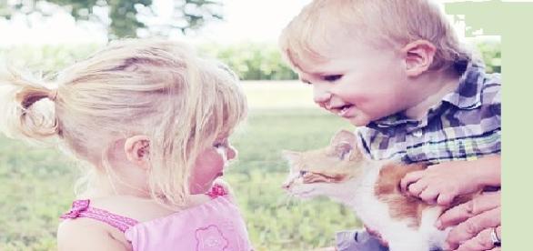 Los niños buscan apoyo en sus mascotas
