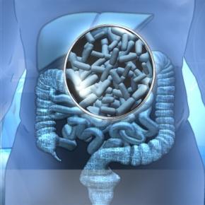 Uso de los probióticos para nuestra salud