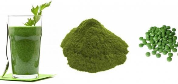 Chlorella - alga, która zaskakuje właściwościami.