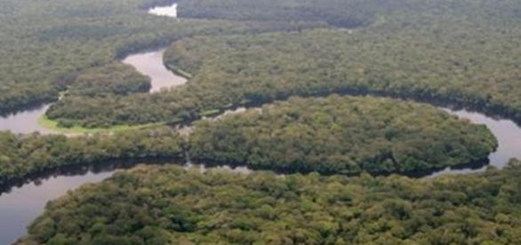 "La rivière Lulilaka,Salonga 2005"" by Radio Okapi"