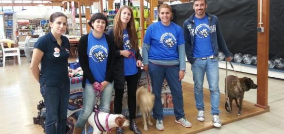 Equipa de voluntários da Associação Cão Viver