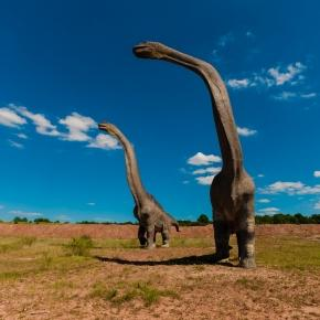 Long-necked sauropods roaming the grasslands.