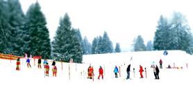Coppa del Mondo di Sci: programma maschile e femminile, gare a Beaver Creek e Lake Louise