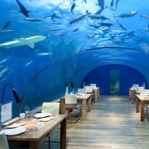 World s most exclusive restaurants for Ithaa prices