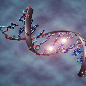 A 3-day summit on gene editing in Washington DC.