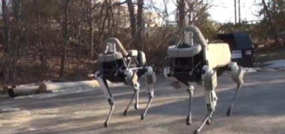 Boston Dynamics es propiedad de Google