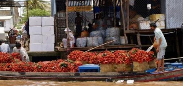 Les marchés du Mekong sont très polluants.