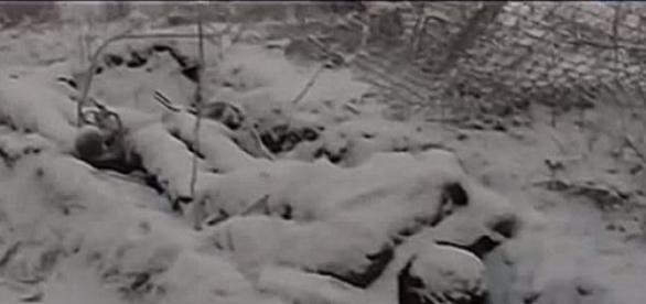 Tausende getöteter ukrainischer Soldaten