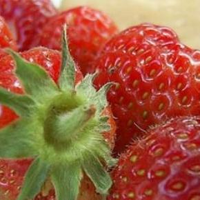 A fruta faz parte de uma alimentação saudável