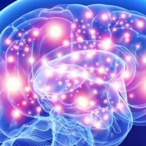 La clave está en la estimulación neuronal
