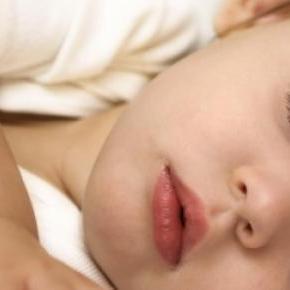 Dormir una siesta mejora el aprendizaje