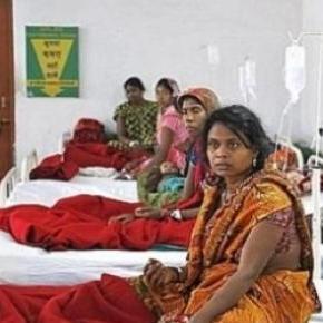 En inde, la stérilisation de masse a la cote ...