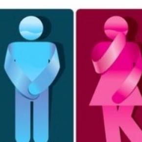 Professores não podem ir sós ao WC