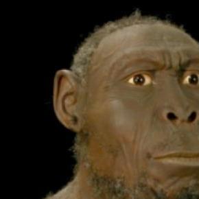 Fue un importante desarrollo evolutivo
