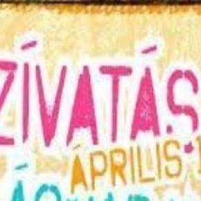 A kép forrása: alitrend.blogspot.com