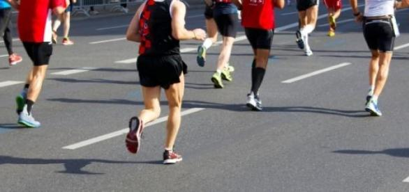 Der Vienna City Marathon findet zum 32. Mal statt.