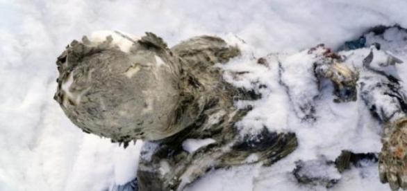 Son restos que tienen medio siglo de antigüedad