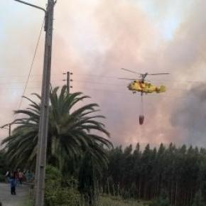 Fogo reativou nova frente em Albergaria-a-Velha