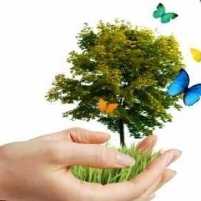 2009-től április 22. a Földanya Nemzetközi Napja