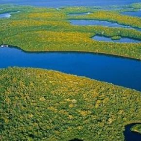Les Everglades sont un environnement fragile.