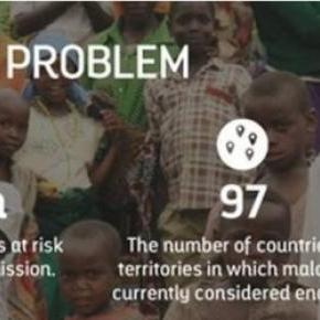 Malaria 2015-Infographic created by Work The World