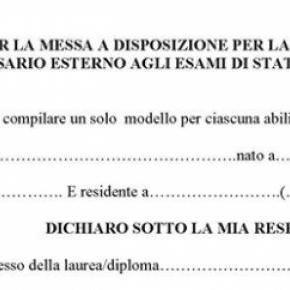 Messa a disposizione commissario esame di stato 2014 2015 for Commissario esterno esami di stato rinuncia