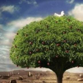 Az élet fájának  szimbóluma