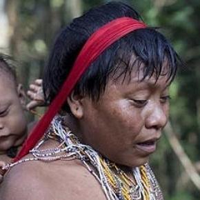 Tribul Yanomami, colectionar de bacterii
