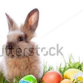 kép foorása: stockphoto.com