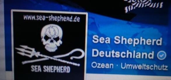 Foto: Facebook Sea Shepherd Deutschland.